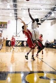 Sophomore Girls Basketball Vinton-Shellsburg vs Williamsburg-0228
