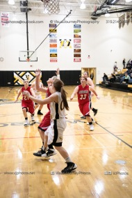 Sophomore Girls Basketball Vinton-Shellsburg vs Williamsburg-0248