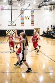 Sophomore Girls Basketball Vinton-Shellsburg vs Williamsburg-0248
