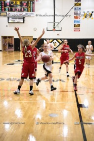 Sophomore Girls Basketball Vinton-Shellsburg vs Williamsburg-0265