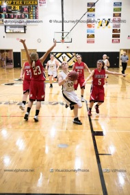 Sophomore Girls Basketball Vinton-Shellsburg vs Williamsburg-0266