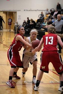 Sophomore Girls Basketball Vinton-Shellsburg vs Williamsburg-0281