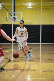 Varsity Girls Basketball Vinton-Shellsburg vs Williamsburg-0392