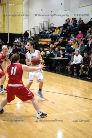 Varsity Girls Basketball Vinton-Shellsburg vs Williamsburg-0439