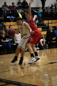 Varsity Girls Basketball Vinton-Shellsburg vs Williamsburg-0611