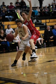 Varsity Girls Basketball Vinton-Shellsburg vs Williamsburg-0612